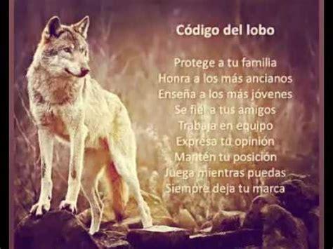 imagenes con frases de amor con lobos frases de lobos youtube