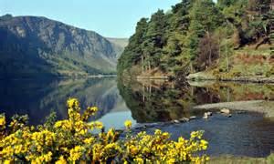 Irish Cottage Gardens - attractions luxury 5 star b amp b holiday cottage accommodation wicklow nr dublin ireland
