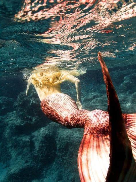 imagenes tumblr reales real mermaid tumblr