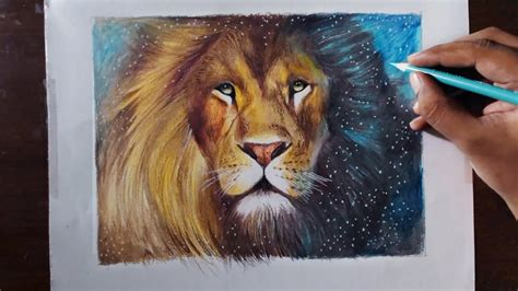lions colors drawing a aslan animal series 3 prismacolor