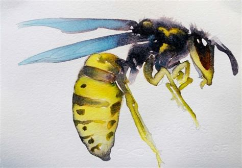 watercolorist carol carter paints   bugs eye view