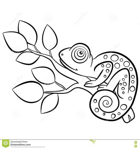 chameleon coloring page chameleon coloring pages printable
