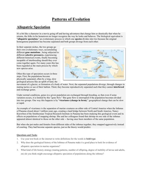 section 17 4 patterns of evolution pictures patterns of evolution worksheet jplew