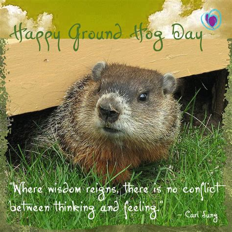 groundhog day vs happy day happy ground hog day embodyheart