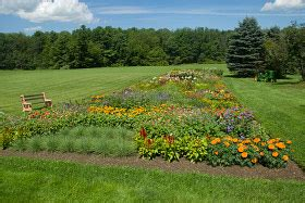 Cut Flower Garden Plan Planting A Cut Flower Garden Southern States Cooperative