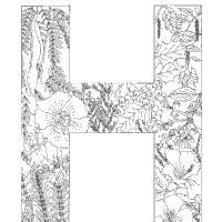 plants alphabet 187 coloring pages 187 surfnetkids