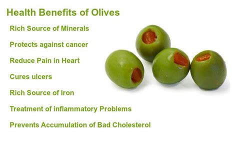 Olive For Health And by Olives Benefits Health Benefits Of Olives