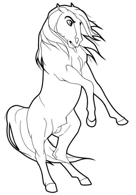 wild horses coloring pages coloring home