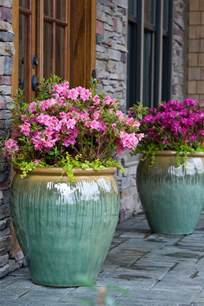Pot Plant Containers Creative Garden Container Pot Combinations And Tips