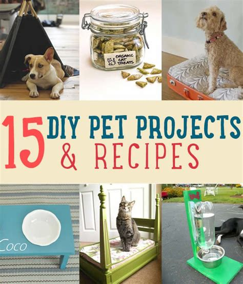 diy pet stuff recipe ideas for your pets diy projects craft ideas how