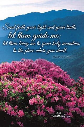 june 2013 psalm 43:3 niv desktop calendar  free june