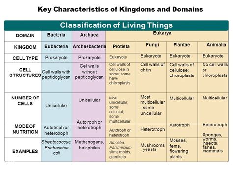 Section 18 3 Kingdoms And Domains by Performance Standards Ppt