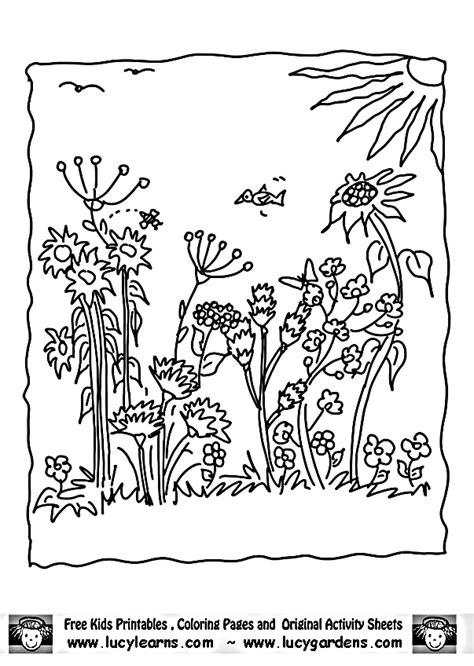 Flower Garden Coloring Pages Flower Coloring Page Coloring Pages Garden