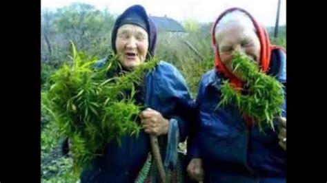 imagenes locas weed capitulo 7 191 la marihuna adelgaza republica weed youtube