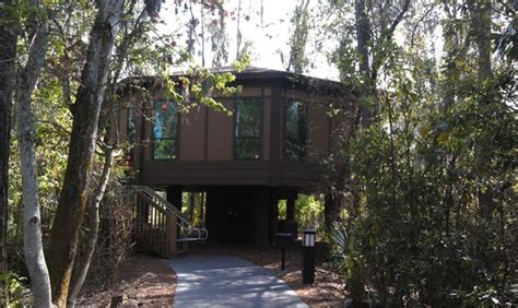 disney saratoga springs villas reviews treehouse villa picture of disney s saratoga springs