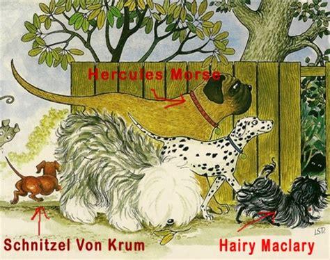 hairy maclary donaldsons dairy hairy maclary from donaldson s dairy animals