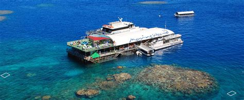 great barrier reef pontoon outer reef pontoon snorkeling archives cairns tour info