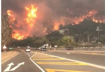 picture gallery and videos: thousands evacuated in knysna