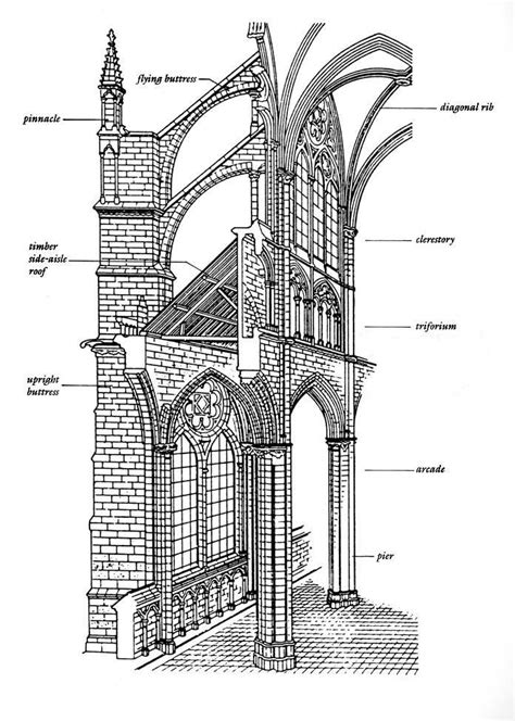 Difference Between Section And Elevation Drawing by Triforium On Second Story Arches And Drawing