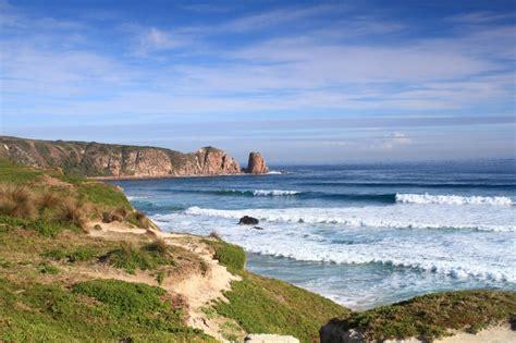 Phillip Island Australia   Accommodation, Things to do