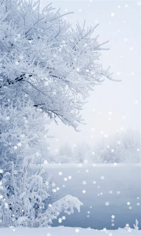 wallpaper for android winter download winter wallpaper for android winter wallpaper 1