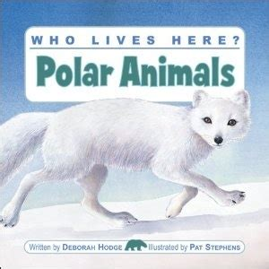 1000 Images About Arctic Animals - 1000 images about arctic and antarctic animals preschool