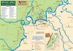 south luangwa national park safari holidays par excellence
