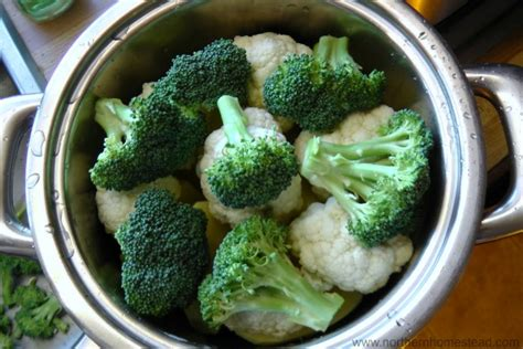 how to steam vegetables without a steamer northern homestead