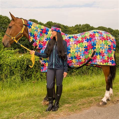 show rugs for ponies pony cob show travel stable cooler sheet printed fleece combo neck rug ebay