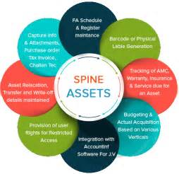Best Mba Programs For Asset Management by Spine Assets Pricing Reviews Alternatives And
