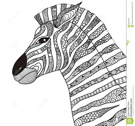 typography coloring book zebra zentangle style for coloring book