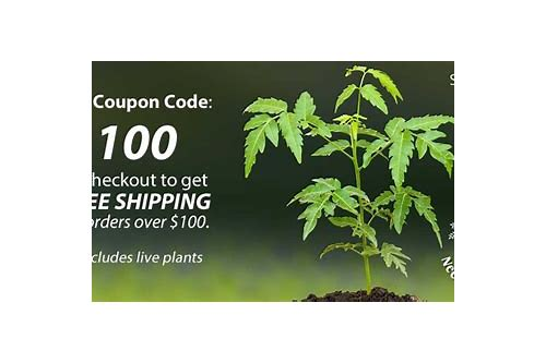 neem tree farms coupons