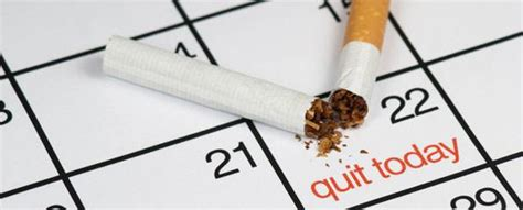 Who Quit by Factors Affecting Quitting Myvmc