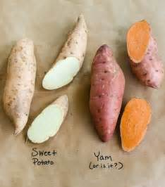 what s the difference between yams and sweet potatoes