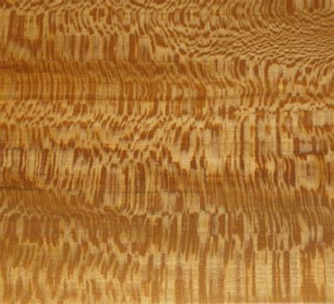 sycamore woodworking sycamore