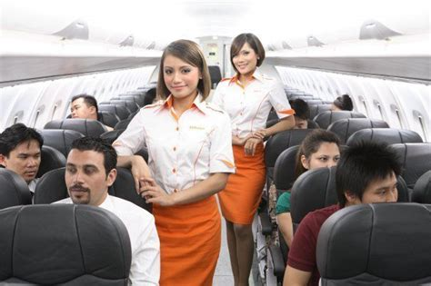 how much do flight attendants make careers wiki