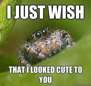 Cute Spider Memes - anime