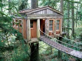 hideaway in the trees explore northwest