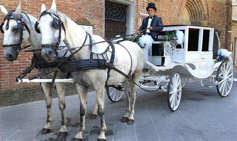 cavalli con carrozza carrozza per matrimoni siena toscana
