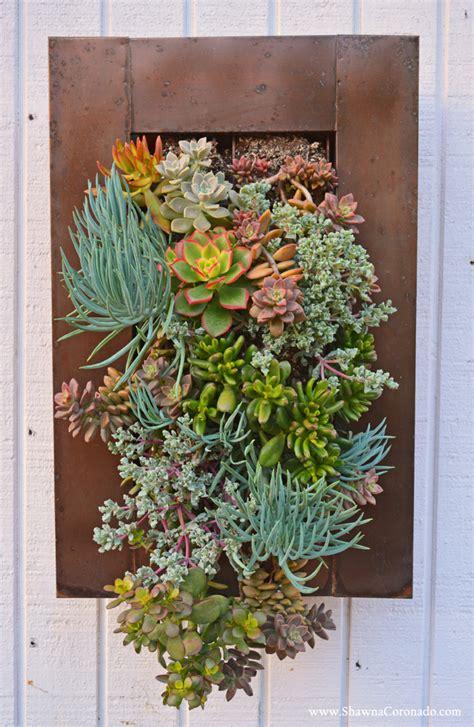 succulent wall garden living wall garden with succulent plants coronado