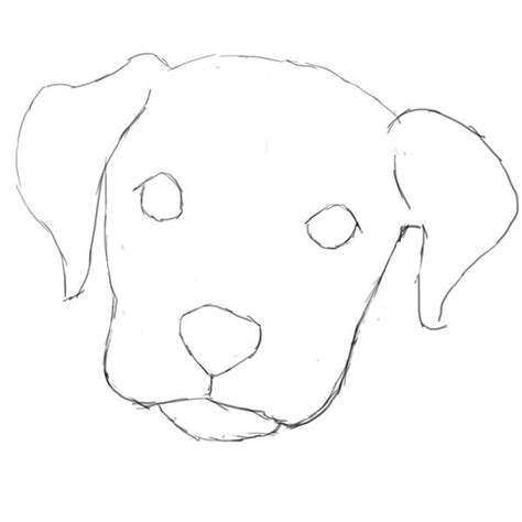 learn how to draw a dog in photoshop