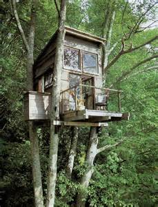 tree houses bespoke tree house design