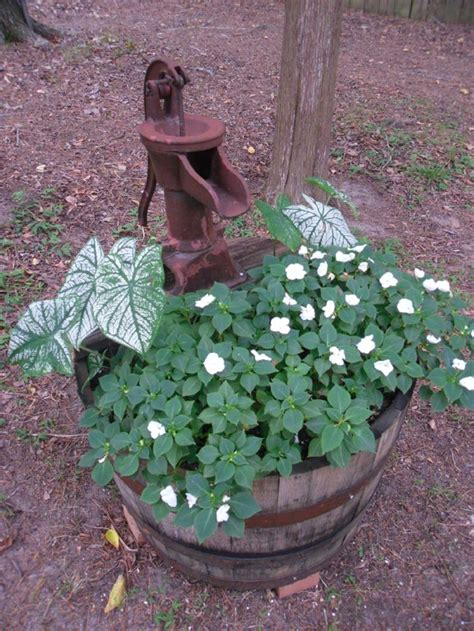 25 beautiful whiskey barrel planter ideas on pinterest