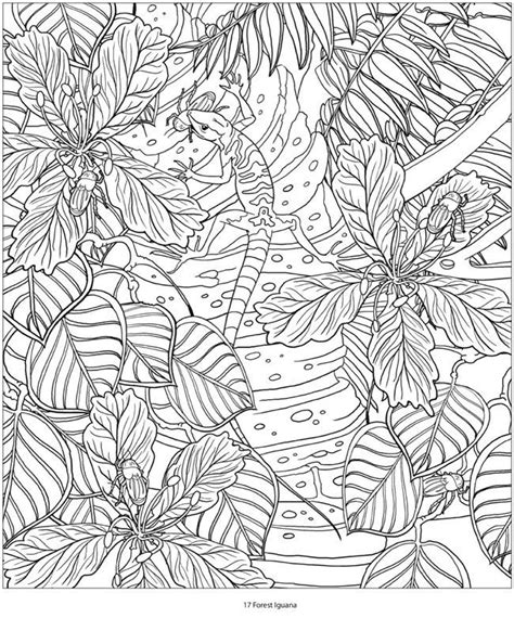 High Quality Coloring Pages