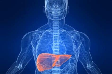 alimentazione per transaminasi alte malattie fegato medicinalive