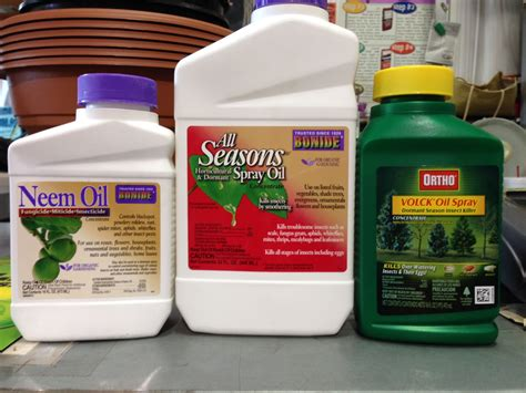 Garden Safe Neem by 5 Things You Didn T About Neem For Garden Pests Neem
