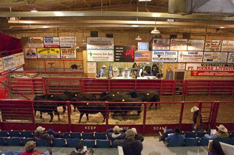 livestock auction fort livestock auction