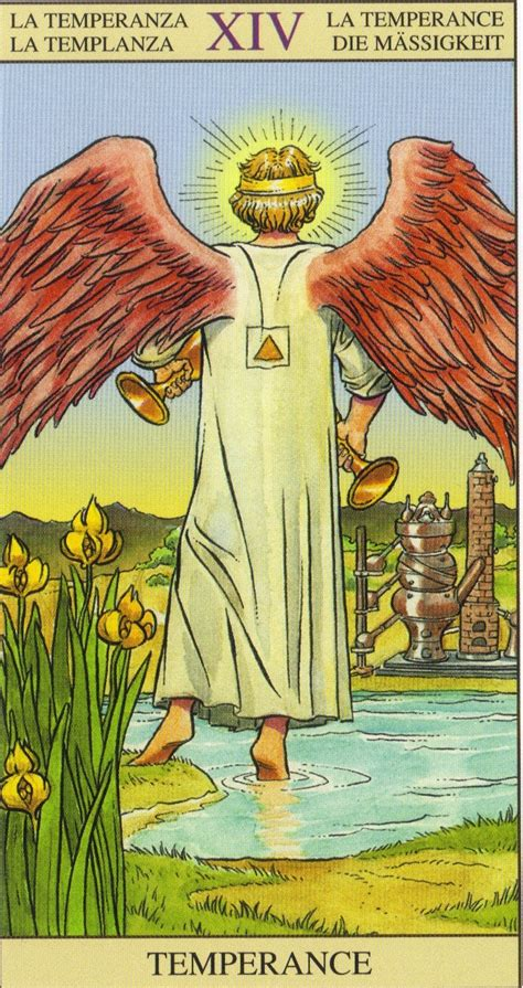 the new visio temperance tarot of the new vision tarot