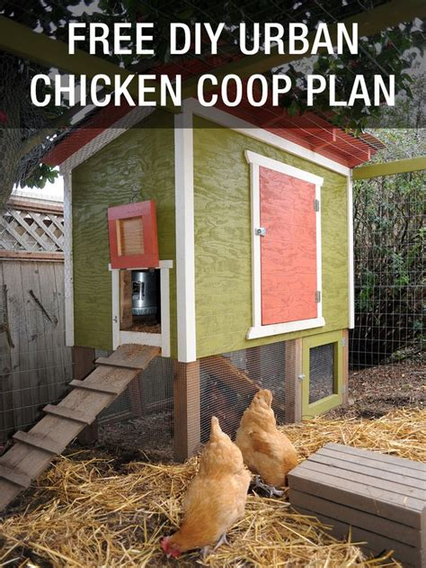 urban backyard chickens 436 best urban chickens images on pinterest backyard chickens gogo papa