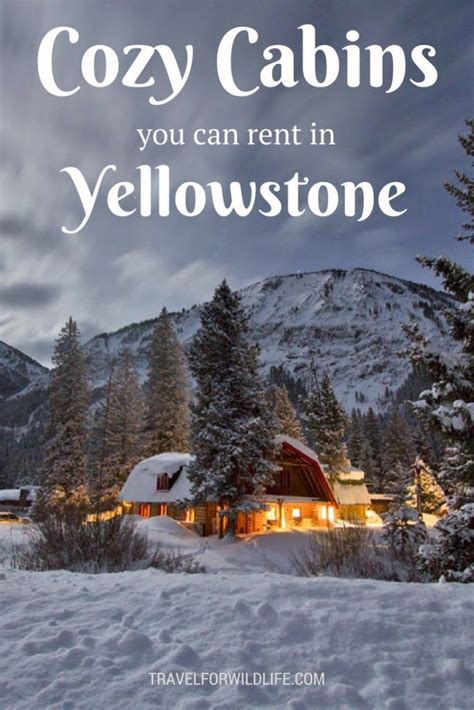 cabin in yellowstone best 25 yellowstone cabins ideas on west